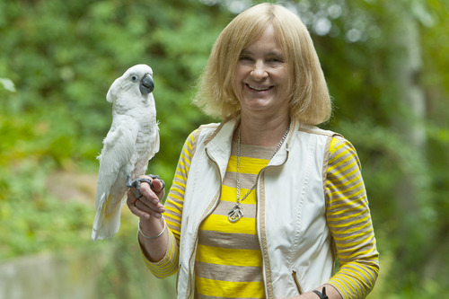 Salt Lake Tribune University of Utah Professor of Anthropology Polly Wiessner poses for a portrait with her cockatoo at her home, 2012. Photo: Chris Detrick