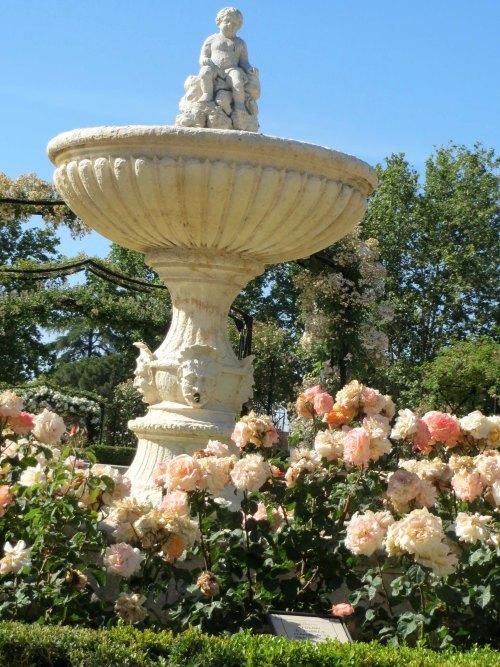 La rosaleda de El Retiro