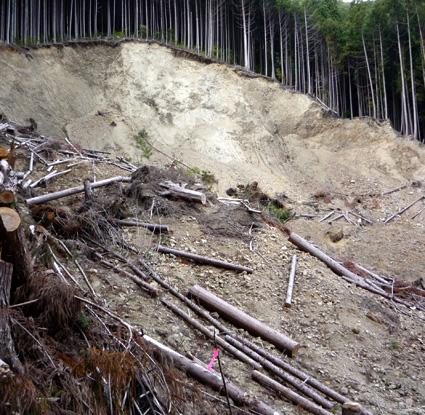 Deslizamiento de tierras a causa de la lluvia